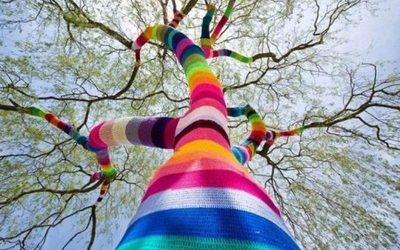 tronc d'arbre habillé d'un tricot multicolore